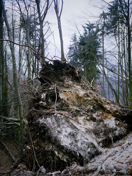 http://experiments.fr/files/gimgs/th-11_julie-hascoet_tenir-rester_14.jpg