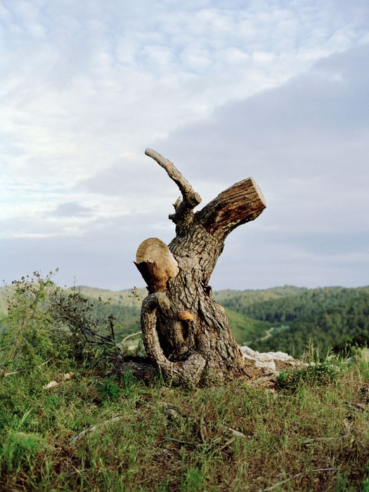 http://experiments.fr/files/gimgs/th-11_julie-hascoet_tenir-rester_05.jpg