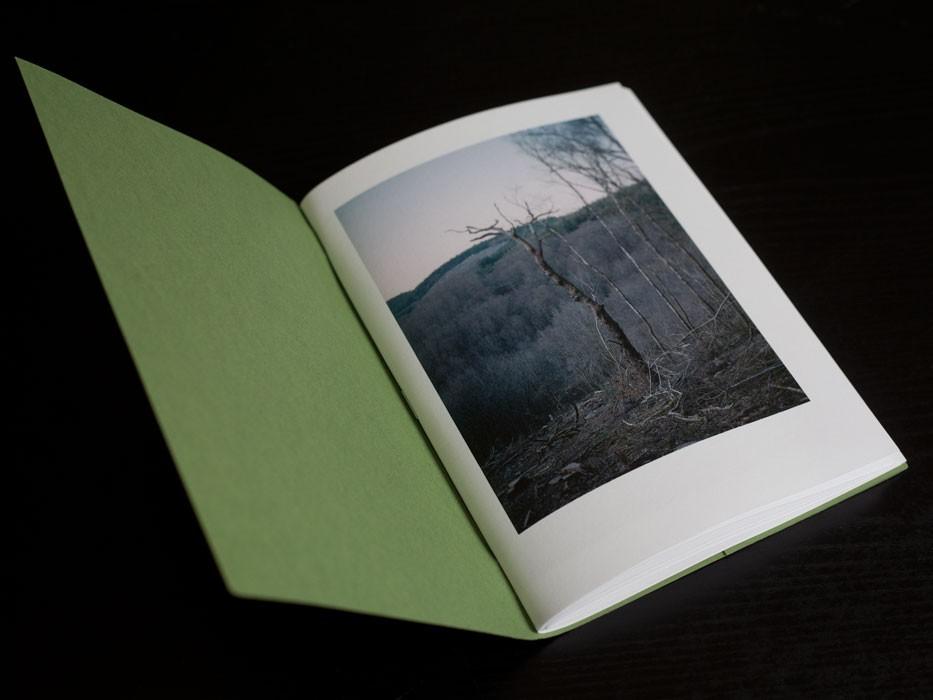 http://experiments.fr/files/gimgs/th-99_julie-hascoet_la-promenade_03_v2.jpg